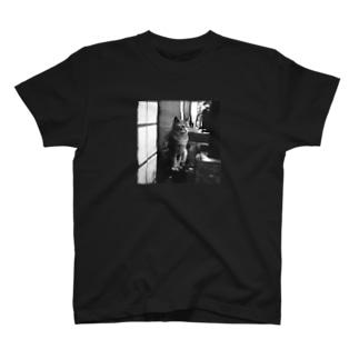 冬猫さん T-shirts