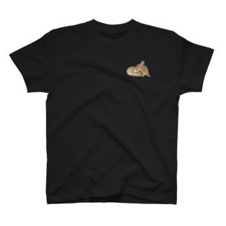 シャッキー・なっちゃん🐰💓🐰キス T-shirts