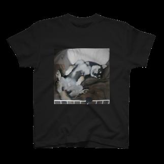 黒柴咲桜の黒柴咲桜~寝姿 A~ T-shirts