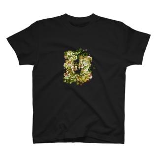 「FLIP B:美」 T-shirts