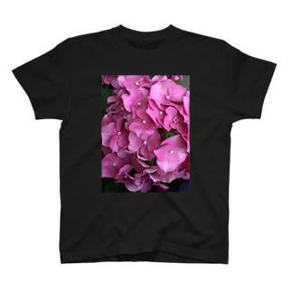 ピンクの紫陽花 T-shirts