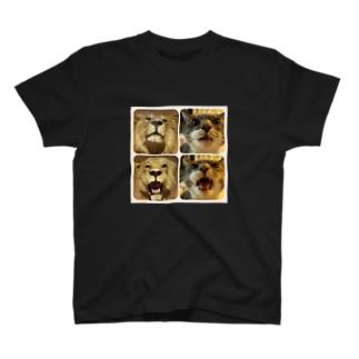シル子様 vs ライオン T-shirts