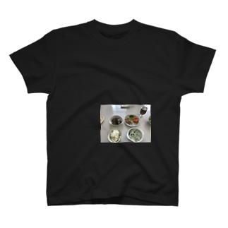 母体栄養2 T-shirts