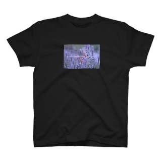ラベンダーノハナコトバ T-shirts