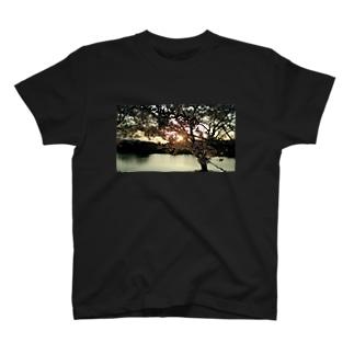 夕陽と桜 T-shirts