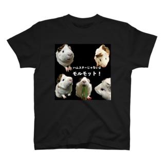 だってモルモットだもの T-shirts