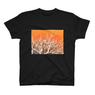 座布団の木 T-shirts