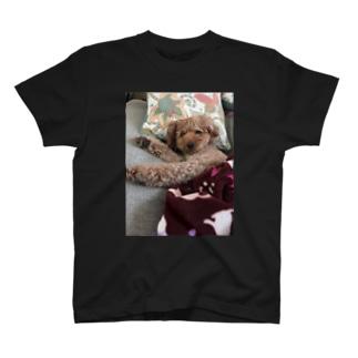ぷうどる T-shirts