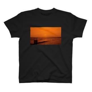 Beach orange T-shirts