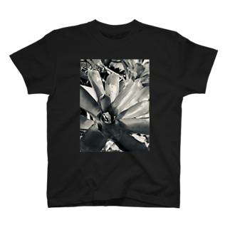 ジャストフィット T-shirts