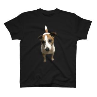 首かしげぷーちゃん T-shirts