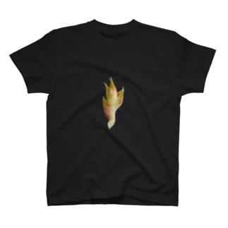 Myoga T-shirts