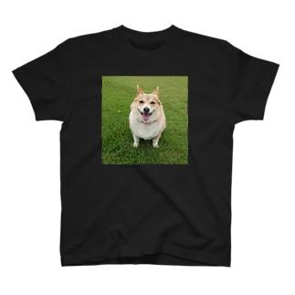 寧々子・芝生 T-shirts