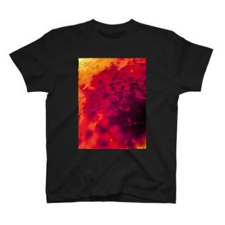 カスミソウの影 T-shirts