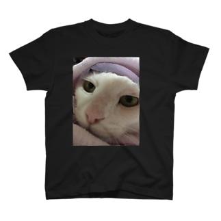 寒いネコ T-shirts