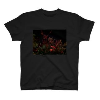 ヨザクラ T-shirts