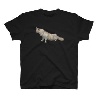 猫ぬ~ん T-shirts