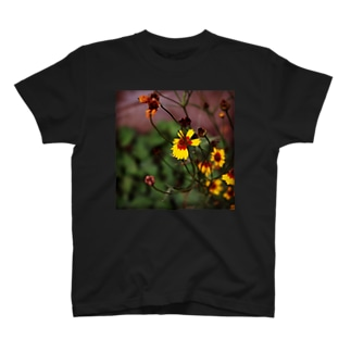 Flower of life / 01 T-shirts