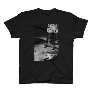 ヒステリックギャラリー T-shirts