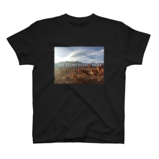 The story T-shirts