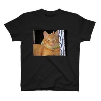 痩せねば はく T-shirts