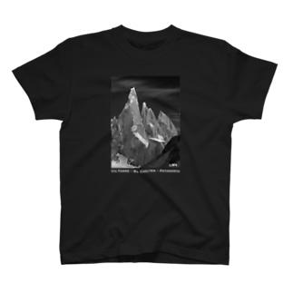 Co. Torre <Patagonia> T-shirts