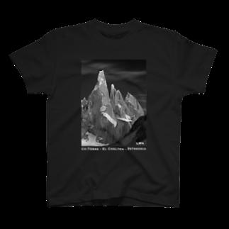 LWsのCo. Torre <Patagonia> T-shirts