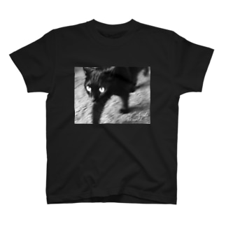 Radiostar suzuriSHOPの銀鉤舎 Cats rule the world T-shirts