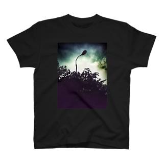 街路灯 T-Shirt