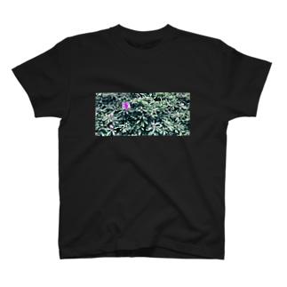 フラワー2 Tシャツ T-shirts