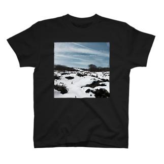 Voice T-shirts
