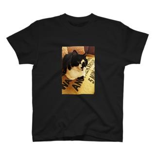 チョビヒゲオヤジネコ T-shirts