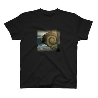 Ammonoidea アンモナイト T-shirts