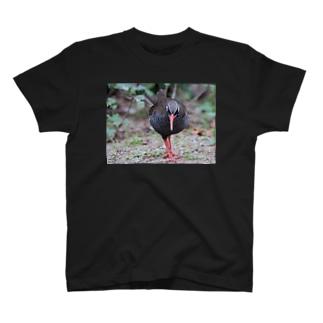 くいな写 T-shirts