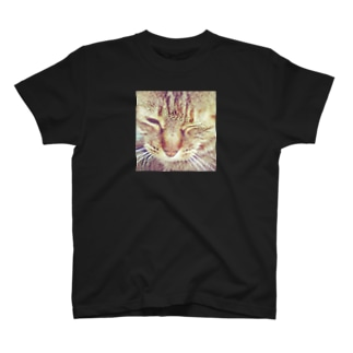 Wink T-shirts