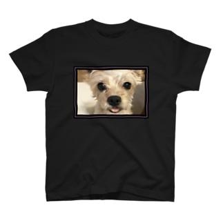 Melmo T-shirts