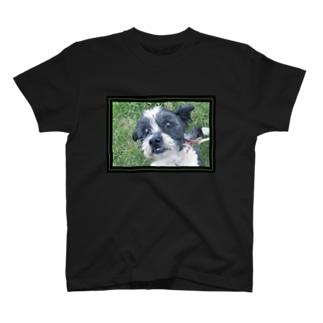 Potsu T-shirts
