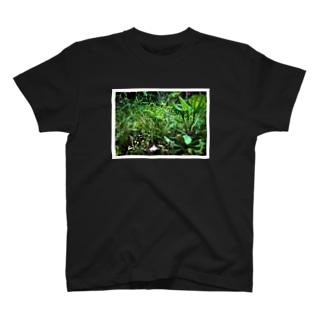 ex_machieのmidori T-shirts