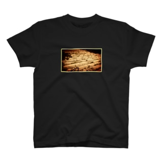 Stone steps T-shirts