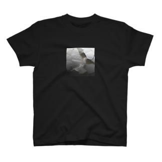 ひび割れ白タマゴ T-shirts