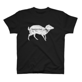 tragulidae  白 T-shirts