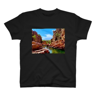 Intrigue Valley T-shirts