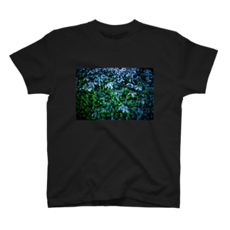 BLUE FOREST T-shirts