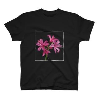 ネリネ T-shirts