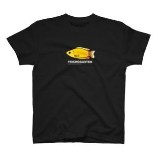 みんな大好き熱帯魚 文字(白) T-shirts