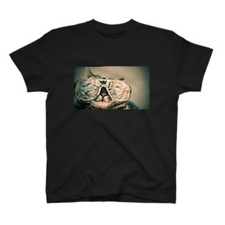 めがね猫 T-shirts