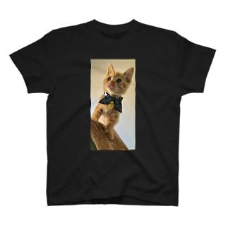 保護猫ロン君! T-shirts