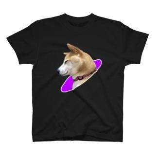 眠り柴犬 T-shirts