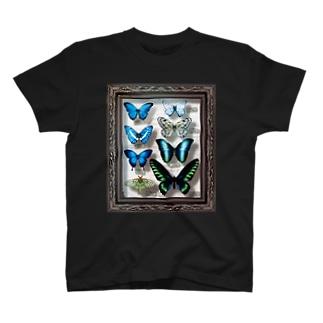 913WORKS WEB SHOP SUZURIの標本箱を持ち歩きたい人の為のTシャツ 2.10 T-shirts