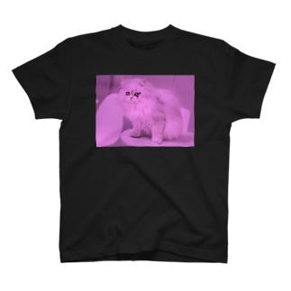 mellow meow T-shirts